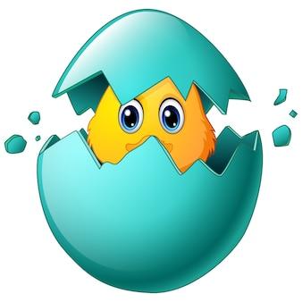 卵殻のかわいいイースターの雛