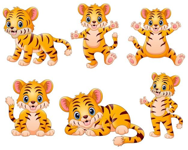 小さな虎が幸せを感じる