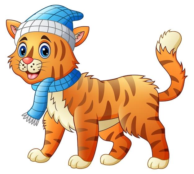 赤い襟をかぶったかわいい猫