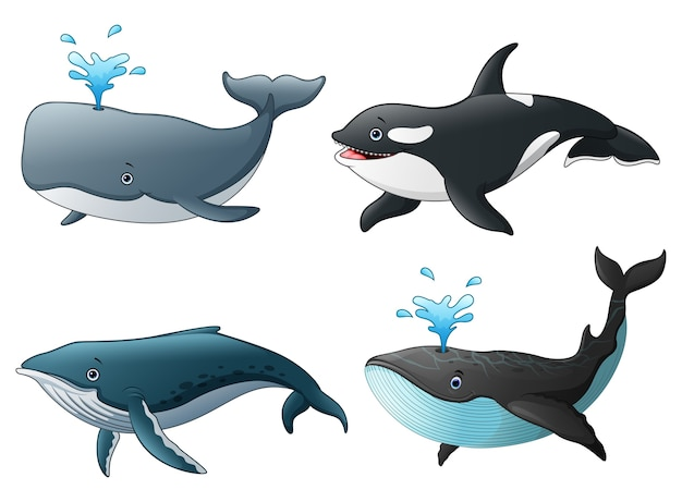 Векторная иллюстрация набор морских морских рыб
