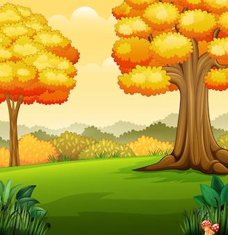 公園の木々の秋の風景