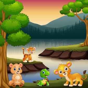 動物は湖で自然を楽しんでいる