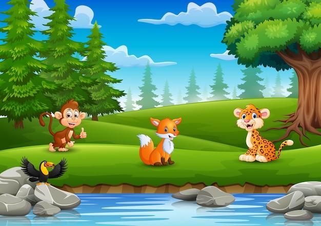 動物は川で自然を楽しんでいます
