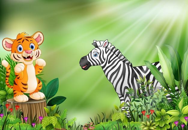 Мультфильм сцены природы с ребенком тигр, стоящий на пень и зебра