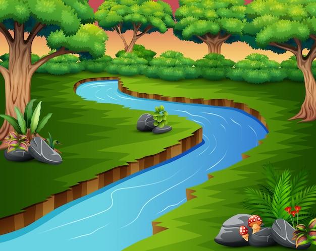 森の中の川の自然の風景