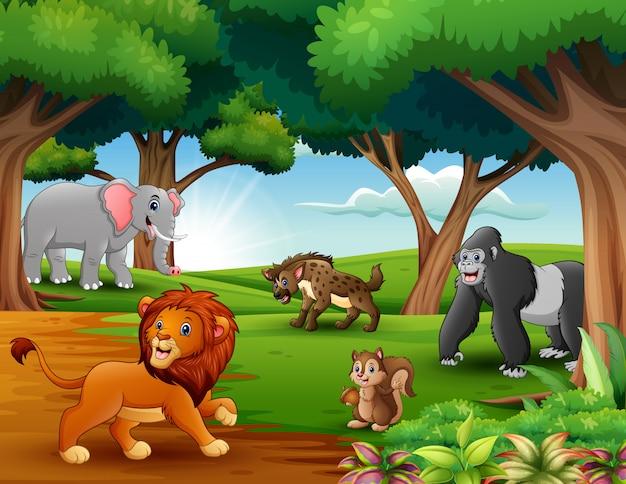 動物の漫画はジャングルで自然を楽しんでいます