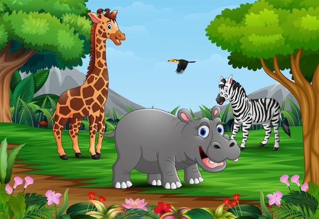 Мультфильм диких животных играют в джунглях