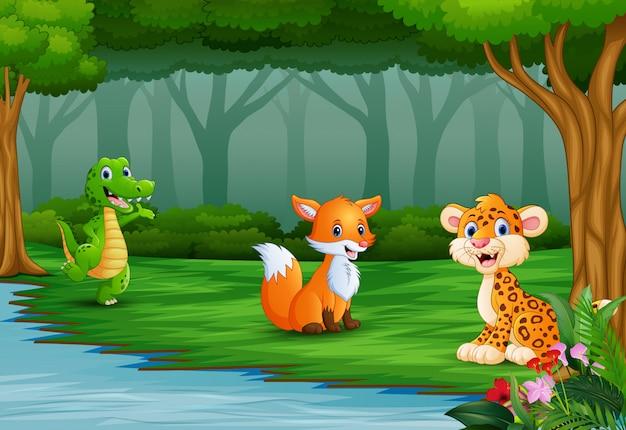 野生動物は川で自然を楽しんでいます