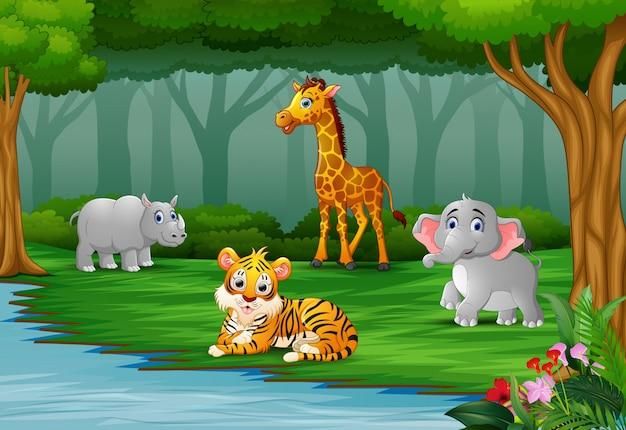 Дикое животное наслаждается природой у реки