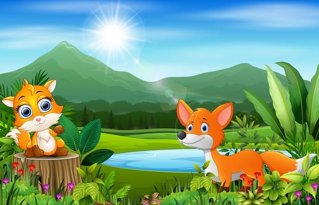 Счастливая лиса на прекрасной природе