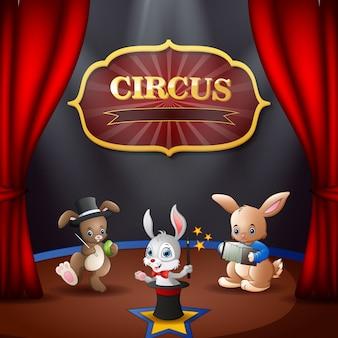 ステージ上の漫画のウサギサーカスパフォーマンス