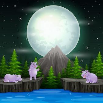 幸せな夜の風景の中のカバのグループ