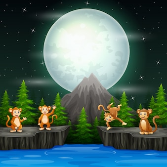夜の風景の中の幸せなサル