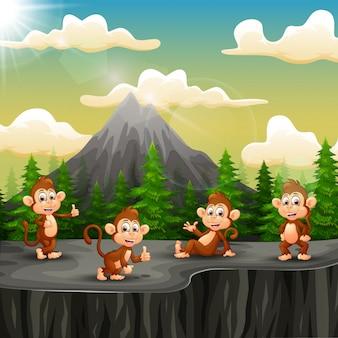 崖の上に座っている猿のグループ