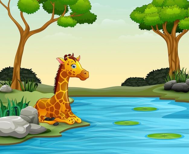 川で自然を楽しんでいるキリン漫画