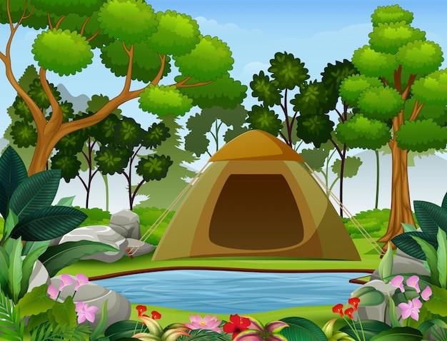 美しい自然の中でキャンプ