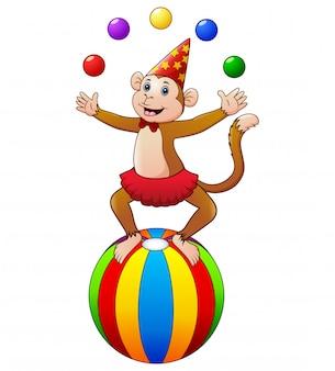 ボールをジャグリングしながらサーカスの猿
