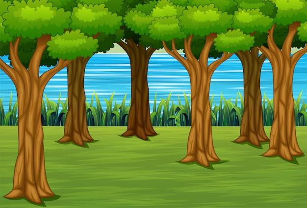 Иллюстрация леса с речной пейзаж