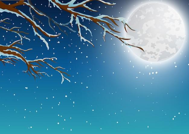 Зимний фон с веткой дерева и лунным светом