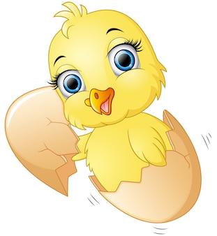 かわいい雛を卵の中に入れて割れた卵