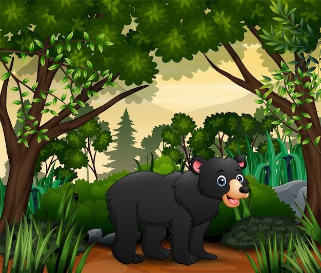 ジャングルの中を歩くかわいいクマ
