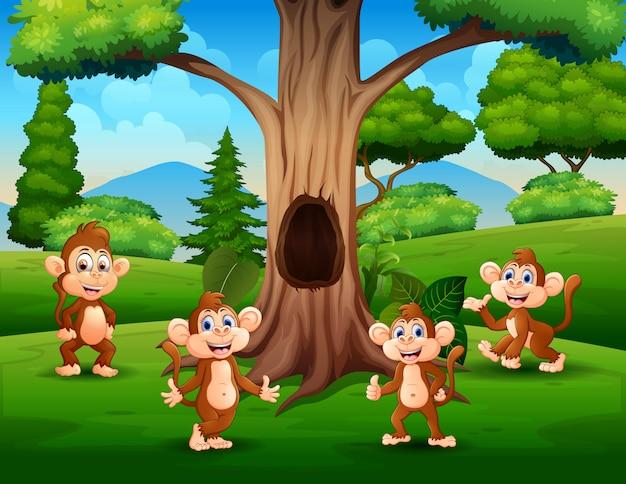 Сцена с группой обезьян под деревом