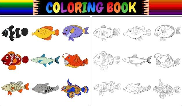 様々な魚を彩る本