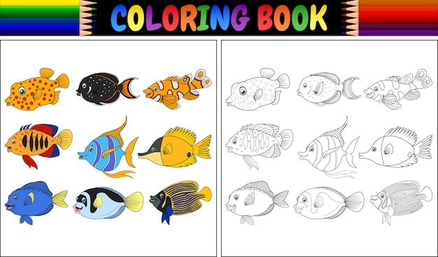 Книжка-раскраска различных рыб