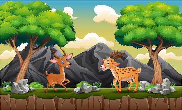 Счастливые олени играют на холме