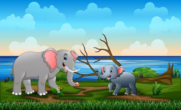 Мама и молодые слоны в поле