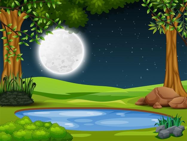 夜の風景で森の真ん中にある小さな池