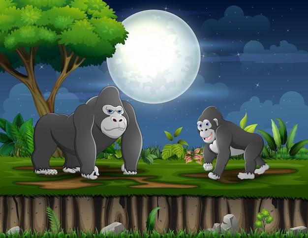 Счастливая мать гориллы с ее ребенком, играя под полной луной
