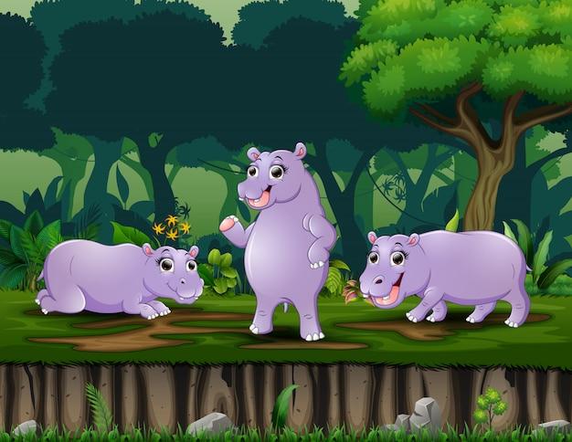 Мультфильм три бегемота играет в ночном лесу
