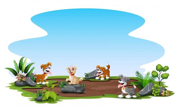 外で自然を楽しむ多くの犬