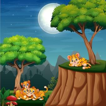 ジャングルで遊ぶ漫画の野生動物のカブス