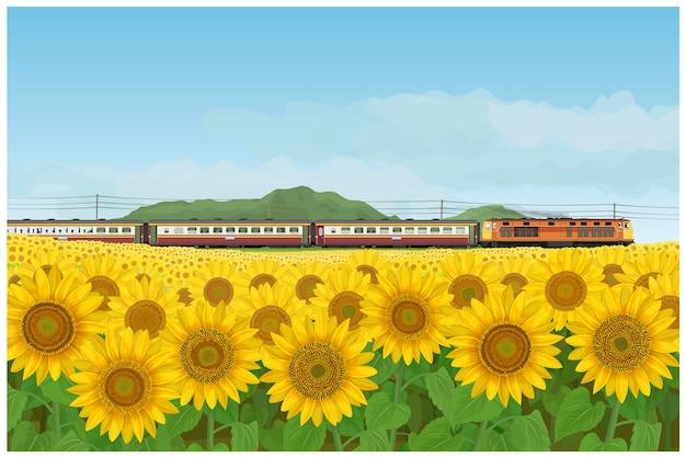 Пейзаж подсолнечника сад и поезд путешествия, проезжая невидимым в стиле таиланда.