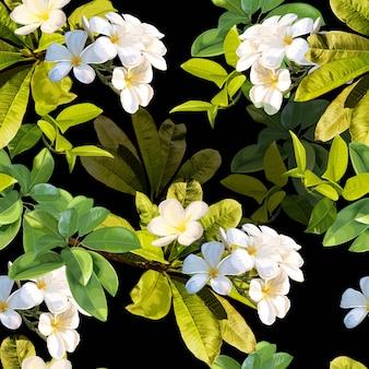 熱帯の葉とプルメリアの花のシームレスパターン