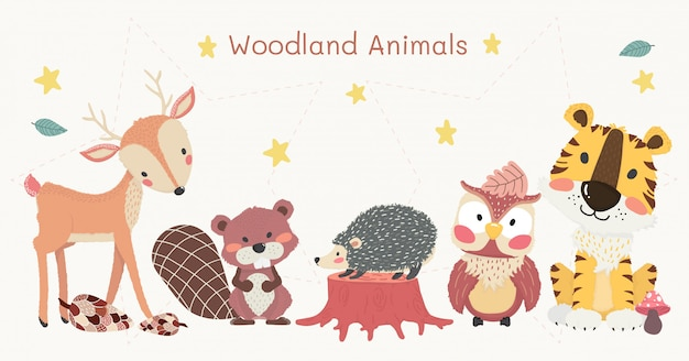 Набор милых лесных животных: тигр, северный олень, сова, бобр и еж