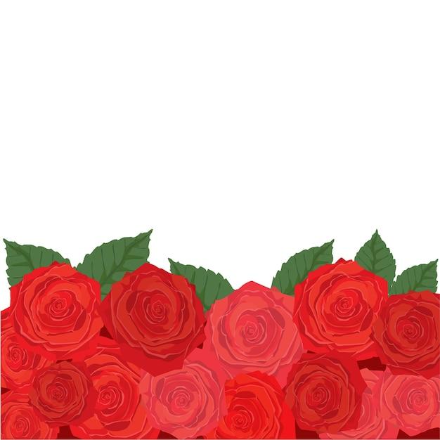 Розы и зеленые листья