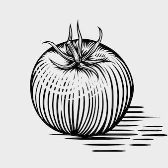 トマト手描きの彫刻風イラスト