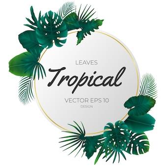 Летние тропические листья шаблон фона.