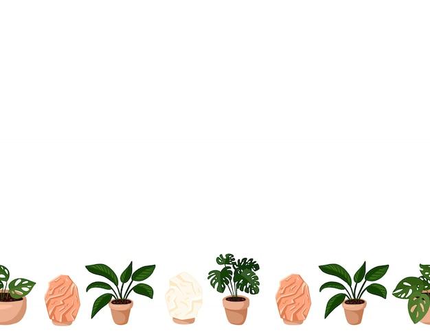 ヒッジ鉢植えの多肉植物とヒマラヤの塩ランプのかわいいセット