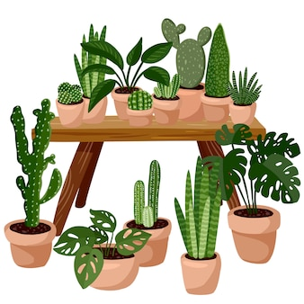 多肉植物の鉢植えのテーブル。ホームラゴム装飾。居心地の良い季節。ヒッジスタイルで装飾されたモダンなアパートメント。分離されたベクトル画像