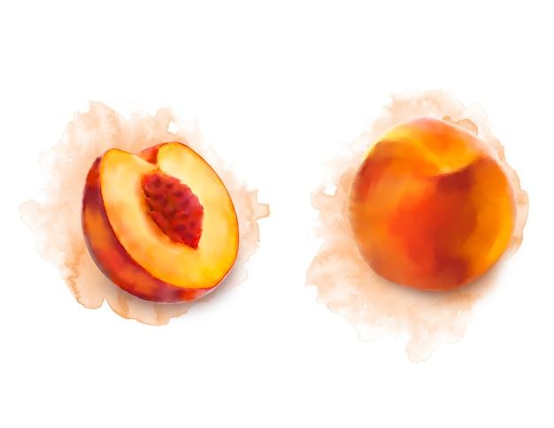Акварель персик