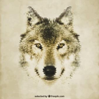 ポリゴンオオカミ