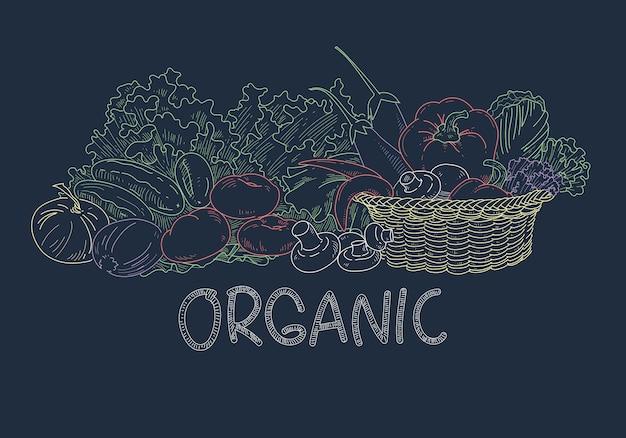 黒板に野菜を描く、ベクトル