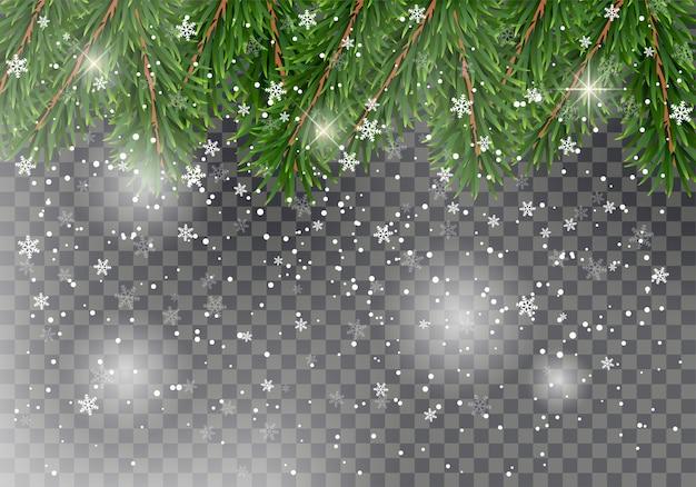 クリスマスの装飾として落ちる雪の詳細なクリスマスモミの木の枝