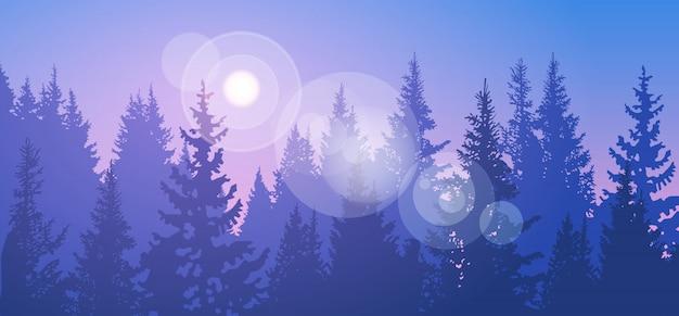 松の森風景山の空の森