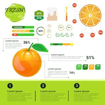 新鮮な有機インフォグラフィック天然フルーツの成長、農業、農業