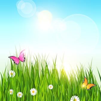 春の風景緑の草青空